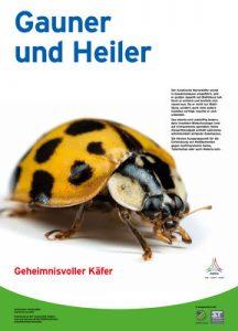 Gauner und Heiler
