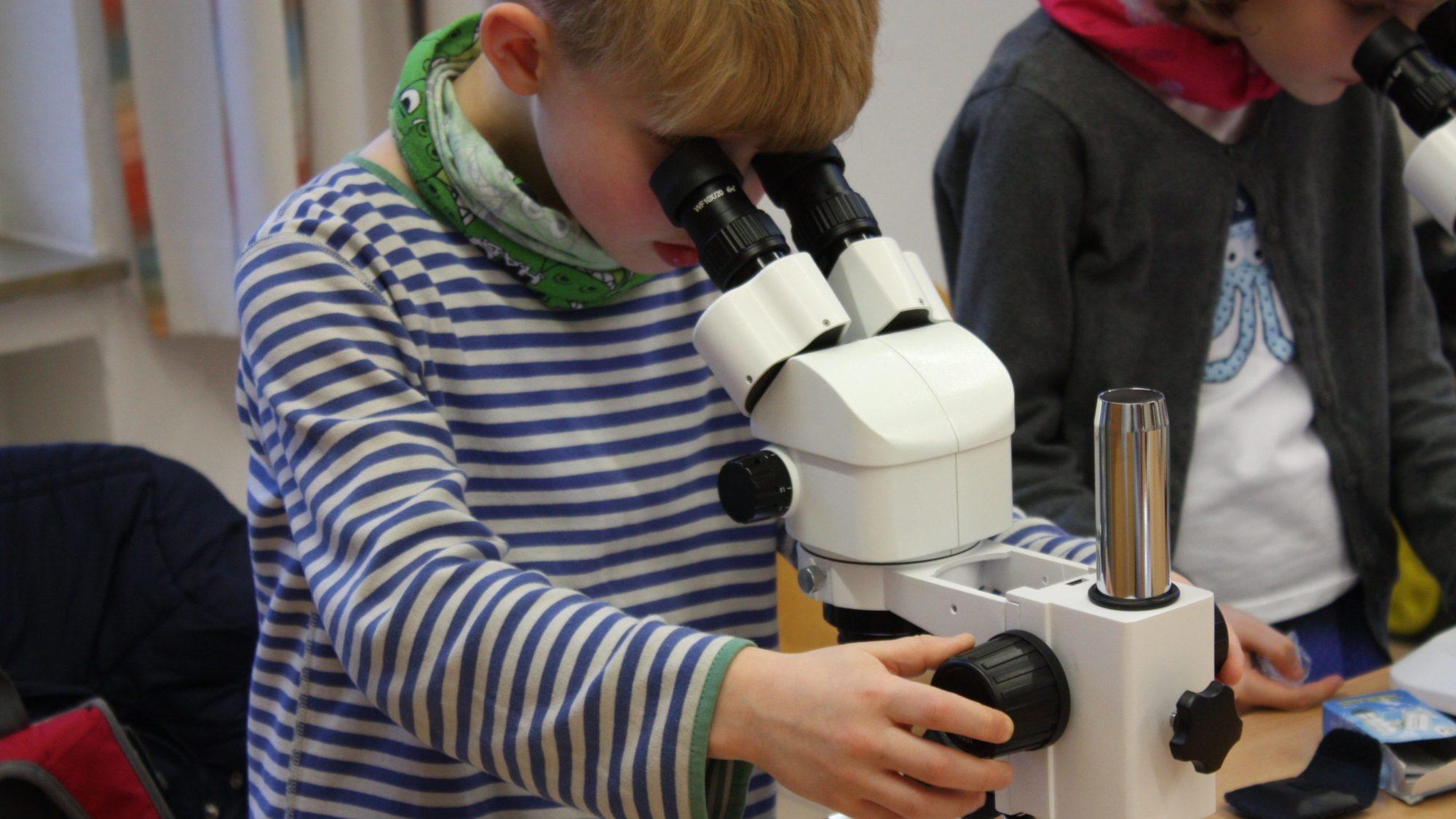 Forscher am Mikroskop