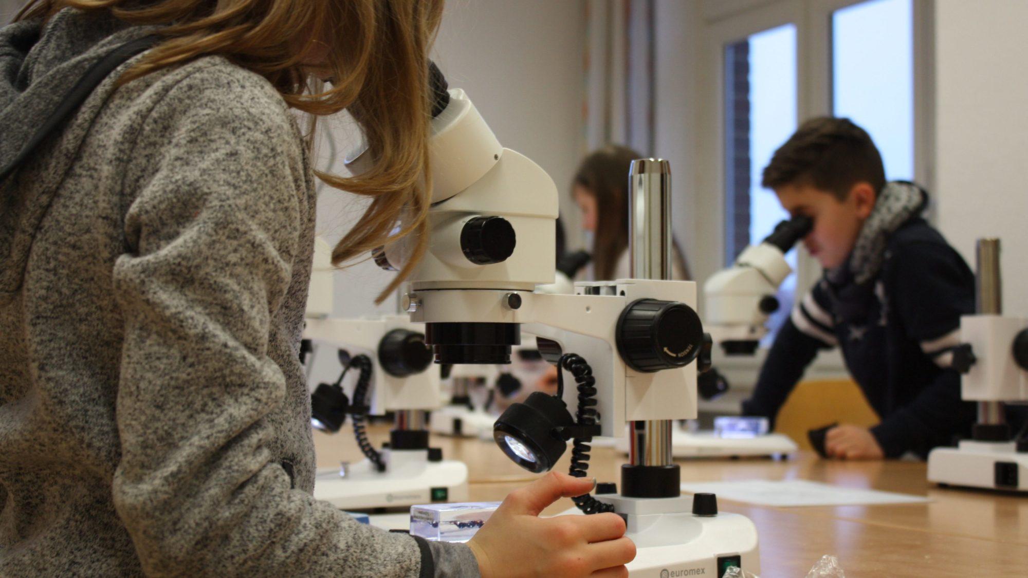 Mikroskopieren im namu